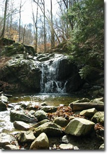 Waterfall in Patapsco Valley State Park