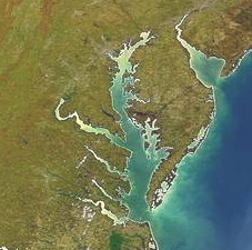 Chesapeake Bay satellite image. Photo by University of Maryland Center for Environmental Science