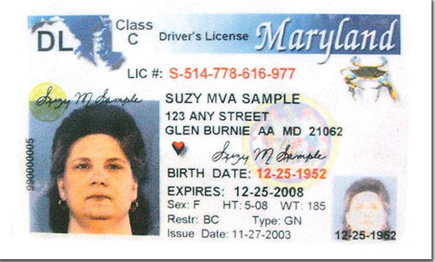 Maryland drivers license sample.