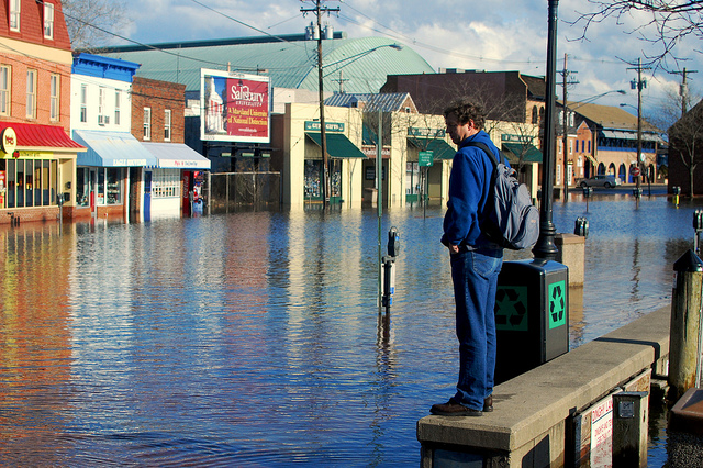 Man looks at flooded parking lot at Annapolis City Dock (By Chesbayprogram on flickr)