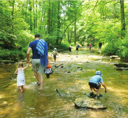 Wading in a stream (Photo from League of Conservation Voters scorecard)