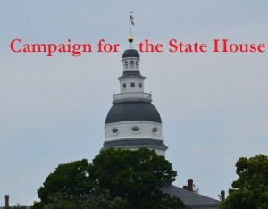 Campaign for the State House larger type