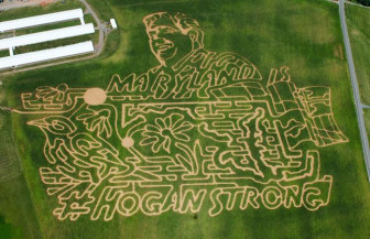 Lawyer's Farm latest corn maze. Photo from Lawyer's Farm Facebook page.
