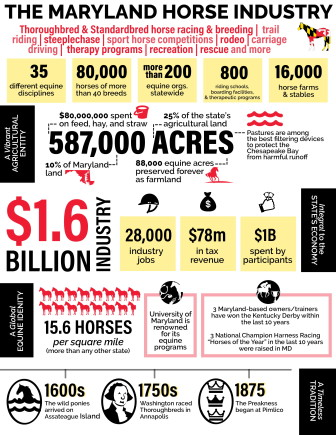 Horse industry chart