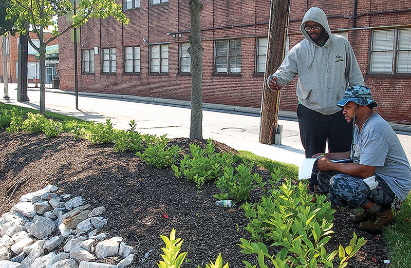 Stormwater rules help create a growing number of jobs