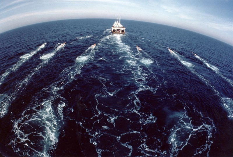 Opposition grows to seismic testing for offshore oil amid concerns about impacts on marine life