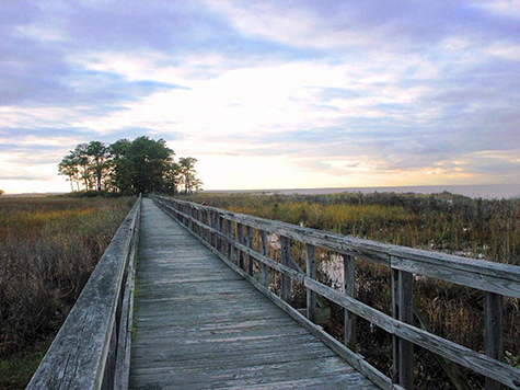 Funding loss might close Eastern Neck Wildlife Refuge