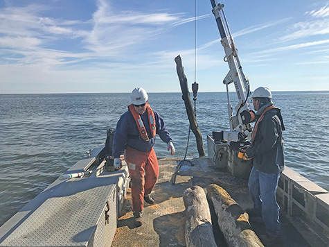 Chesapeake debris cleanup presses on, months after storms