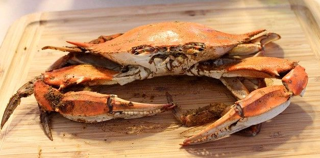 Chesapeake crab industry remains crippled by visa shortage, coronavirus