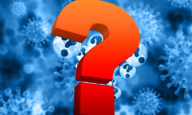 Questions for Authority during a pandemic