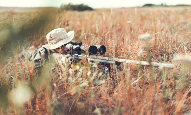 The Amazing Advantage of Eotech Sights for Military Workforce