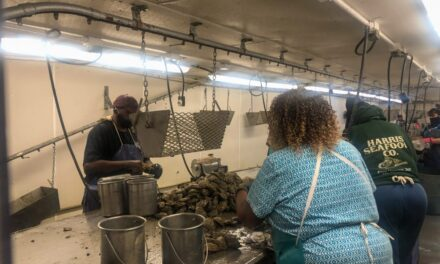 COVID pandemic leaves fishing industry casting for customers
