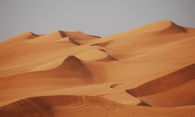 Why should you try the desert safari in your next trip to Dubai?