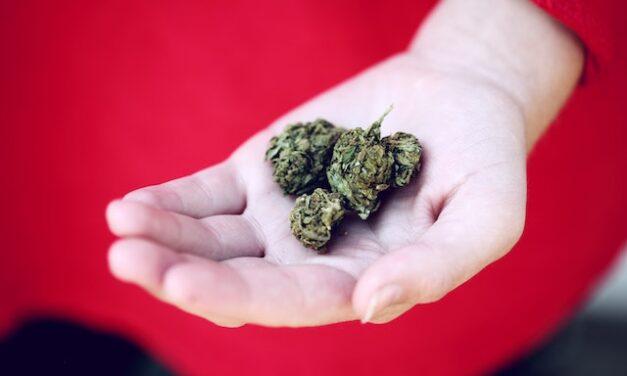 3 Ways Increased Uptake of Medical Marijuana is Impacting the US