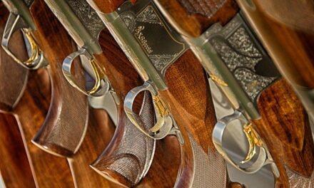 Long gun restrictions among four Md. Senate veto overrides