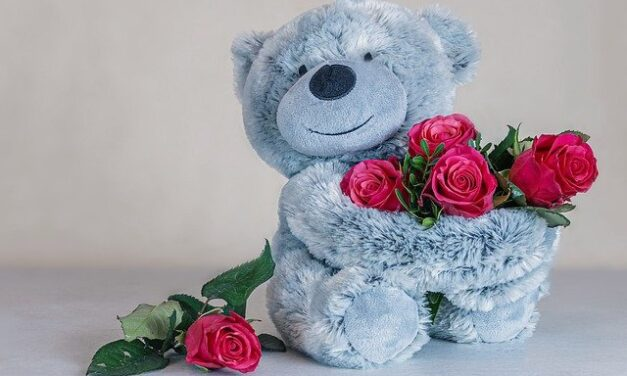 Rose Teddy Bear Near You the Best Valentine Day Gift Idea