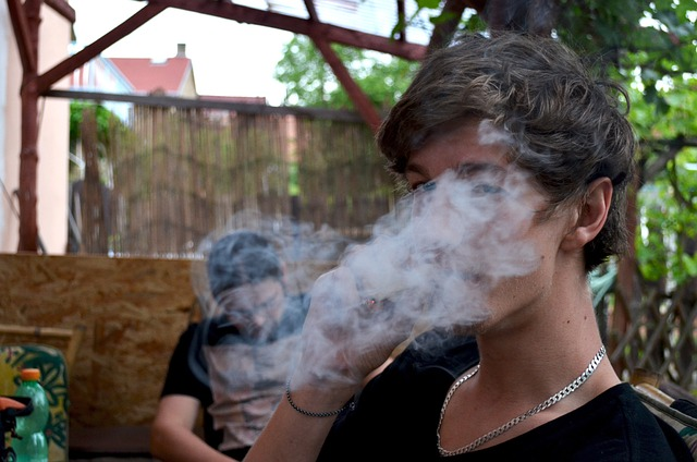 Marijuana legalization proposed in Maryland Legislature
