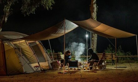 Quick and Easy Breezy Tips To Fight Ticks While Camping