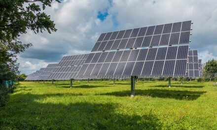 Is It Better to Purchase or Lease Solar Panels?
