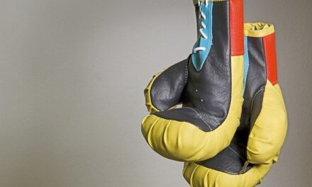 How to choose the right kind of boxing gloves?